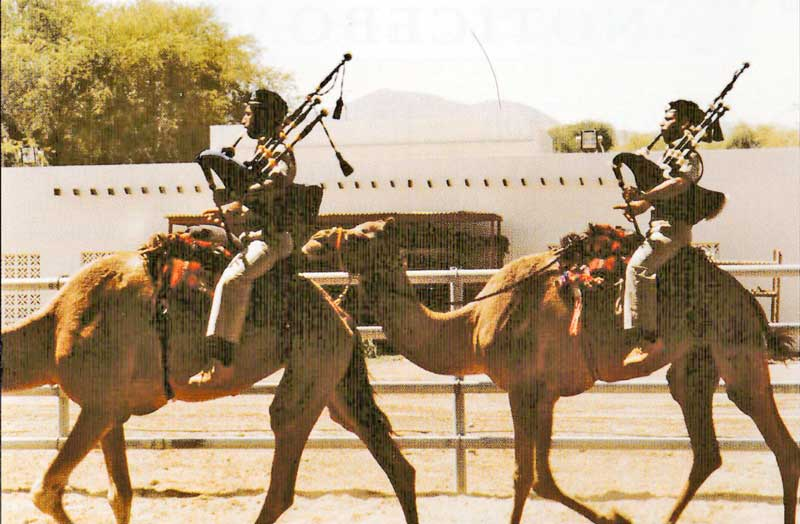 The Camels are Coming … pipers of the Omani Army show how it is done.