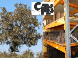An end in CITES